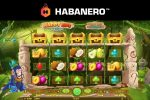 Habanero goes bananas with Happy Ape